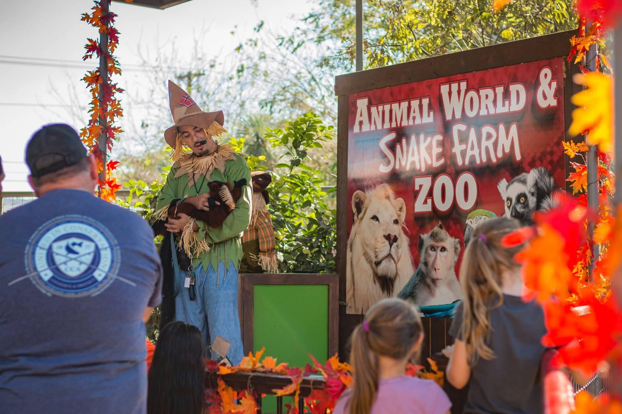 halloween show animal